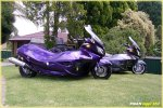 Burg650purpleside.jpg